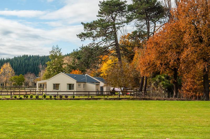 Novozélandská farma
