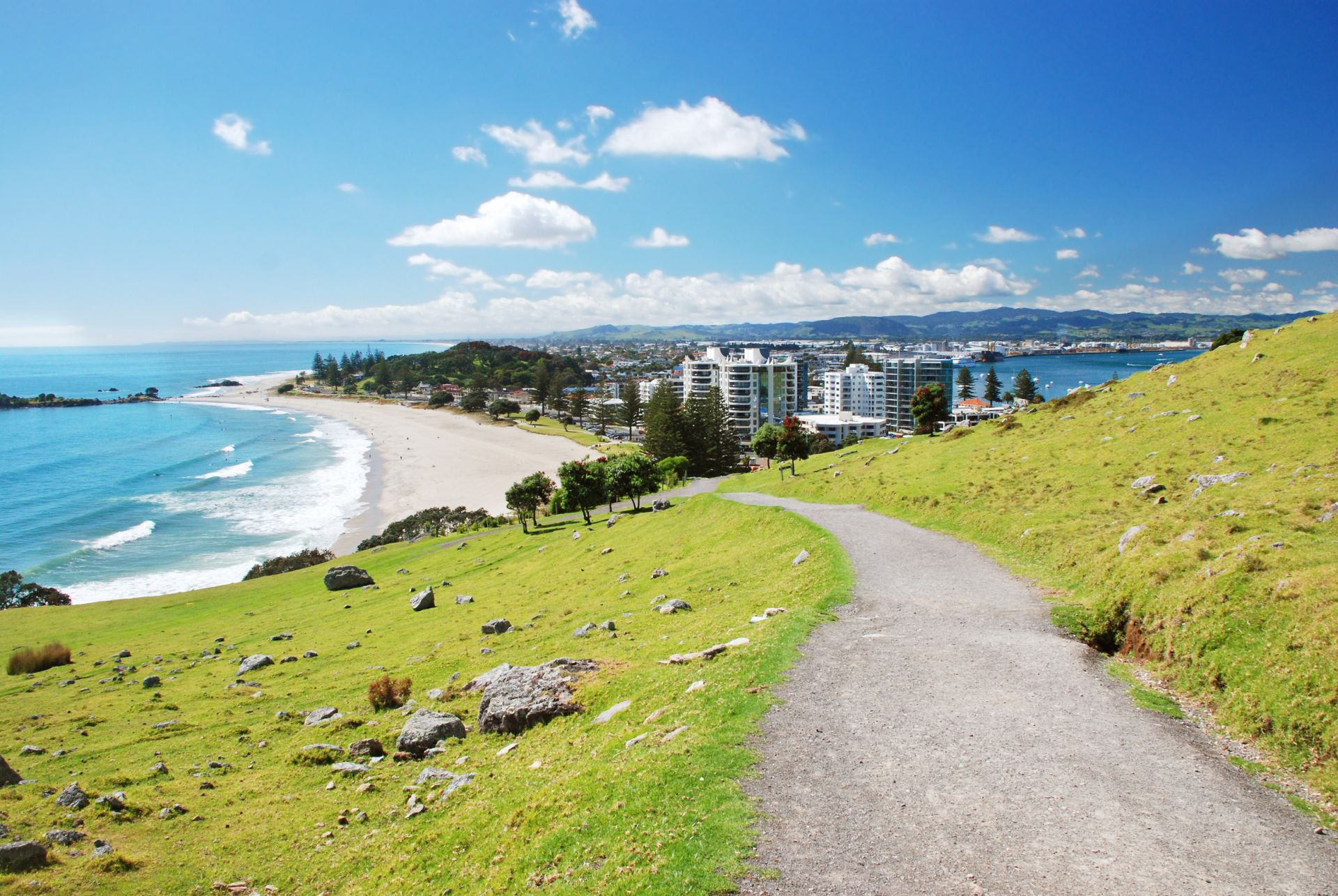 Tauranga New Zealand